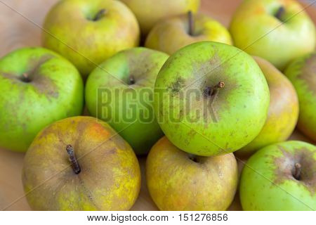 Selective focus of Imperfect looking organic Belle de Boskoop apples with unconventionally raised method, no genetically modified organism techniques