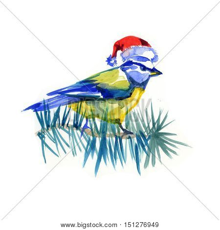 Watercolor illustration tit or titmouse in Christmas hat