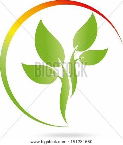 Plant and sun logo, leaves, naturopath and nature logo