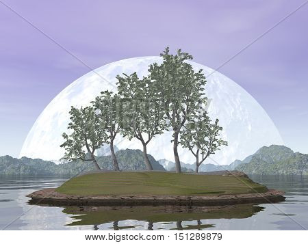 Smooth leaved elm bonsai tree by red sunset over the water - 3D render