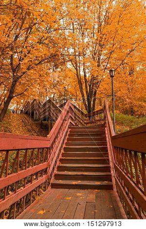 Wooden stairs with leaves in the autumn forest