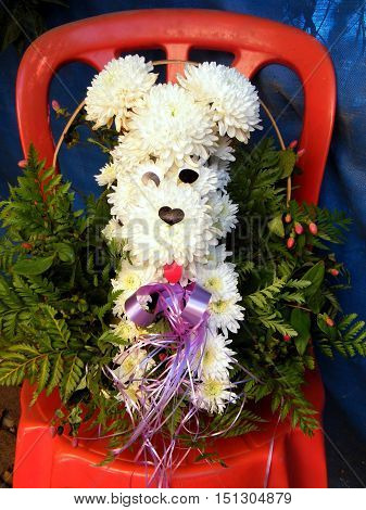 Bouquet of white chrysanthemums in the shape of a dog on a red chair in Or Yehuda Israel