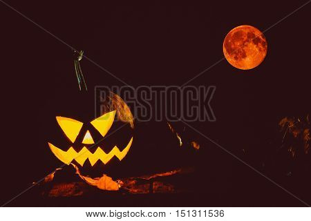 Glowing Pumpkin Symbolizing The Head Of Old Jack, With Full Blood Moon In A Night Spooky Dark Backgr