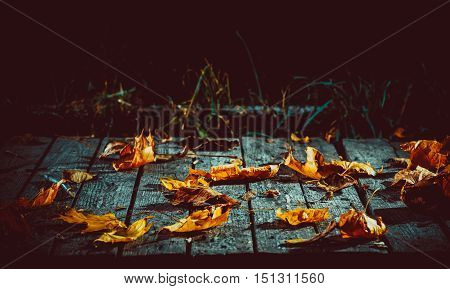 Beautiful Mysterious Background With Fallen Maple Leaves On The Old Boards For The Day Of Halloween.