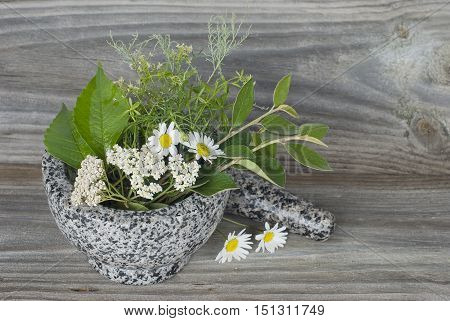 Medicinal herbs in stone mortar on old wooden board