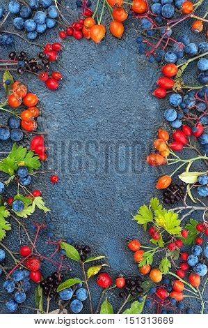 Frame from a variety of wild berries on the textural background top view with copy space