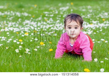 Cute chubby toddler crawling on the grass exploring nature outdoors in the park eye contact