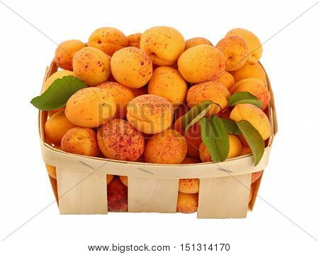 Fresh Ripe Apricots In Wooden Basket Over White