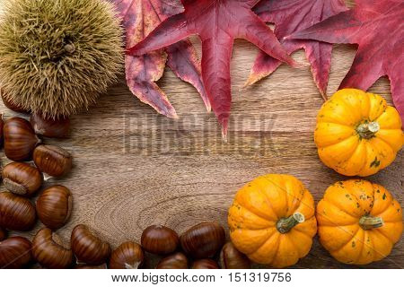 frame of small pumpkin, chestnut, curly chestnut and red leaves on wood