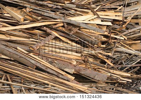 Pile of raw planks of coniferous wood.
