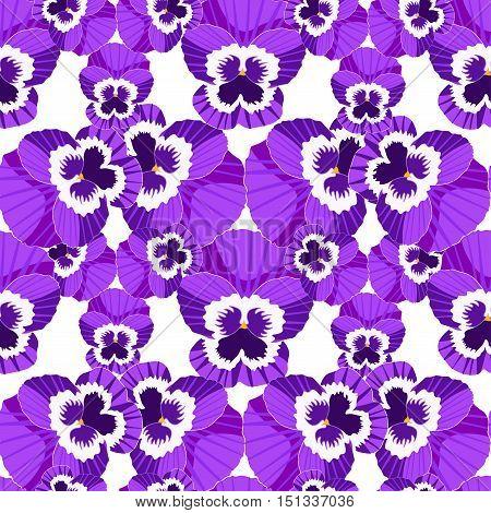 Seamless Pattern Viola Blossoms, Pansies. Vector Illustration