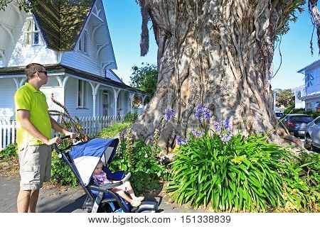 Young Father With His Cute Toddler Daughter In Stroller Looking The Tree Trunk Of Moreton Bay Fig Tr