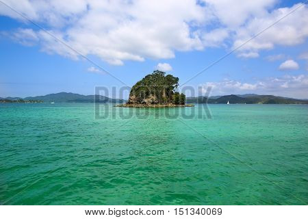 Small Green Island Surrounded By Water. Nz