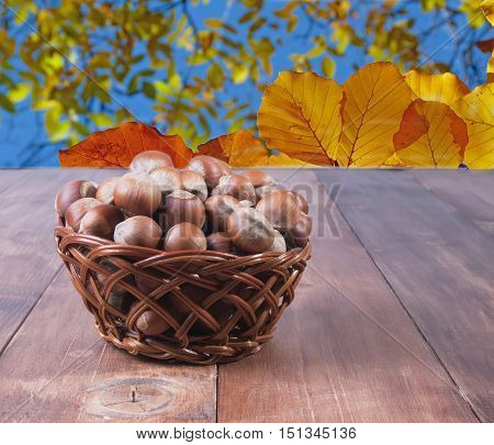 Hazelnuts in a basket on a background of yellow leaves. The background is blurred.