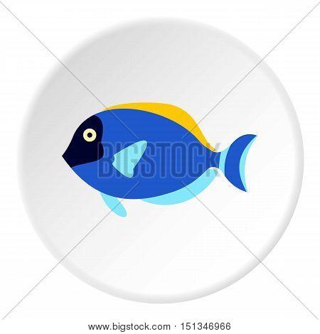 Surgeon fish icon. Flat illustration of surgeon fish vector icon for web