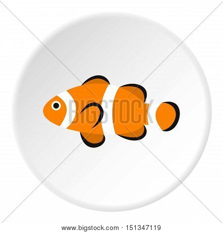 Clown fish icon. Flat illustration of clown fish vector icon for web