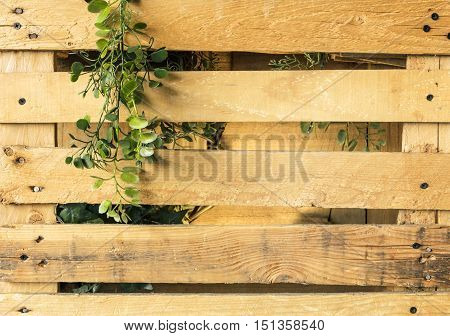 A photo of a wooden crate with a branch of green leaves. A rustic background texture with copyspace