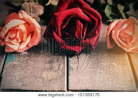 Roses wither on the old wooden floor.