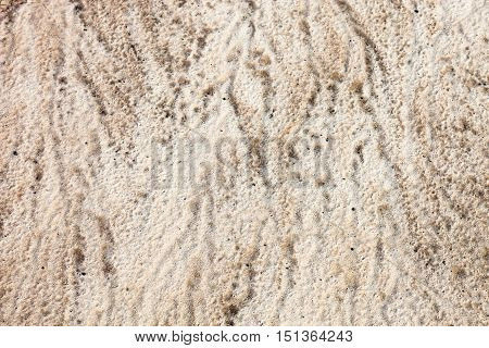 Sand surface after the rain with the visible traces of the raindrops and water currents