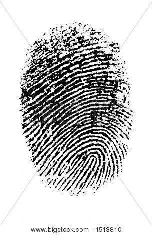 Thumb Print Hi Res.Eps