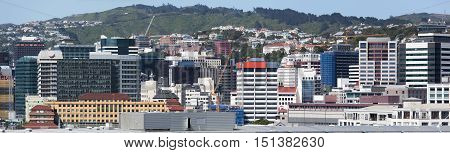 The panoramic view of Wellington city downtown (New Zealand).