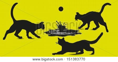 Three cat and a pool with a ball On an abstract composition design handiwork game animal water a pool splashing style mammal beast eps10 vector illustration Stock