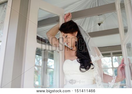 Beauty Bride In Bridal Gown With Lace Veil On The Nature. Beautiful Model Girl In A White Wedding Dr