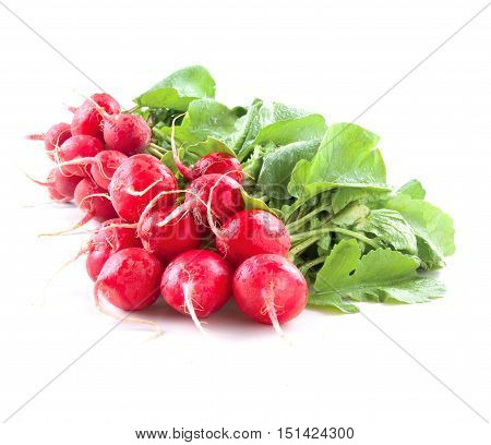 Red radish on the white backgroud isolated raw food vegetables