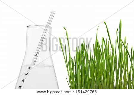 Close-up of a Flask with Pipette and Grass