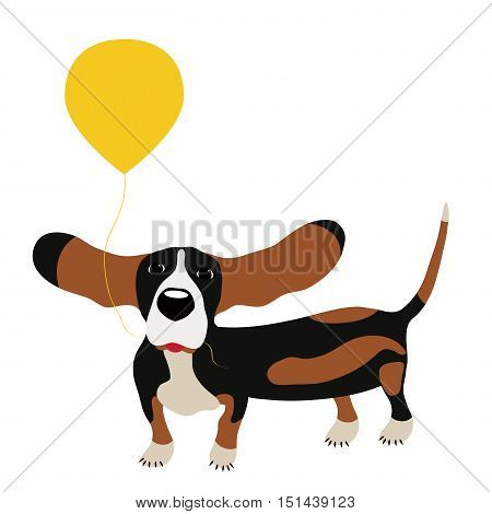 dog Basset Hound with a balloon isolated on white background