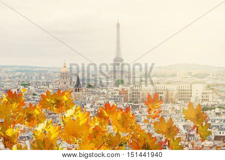 skyline of Paris city roofs with Eiffel Tower from above and fall maple leaves, Paris France