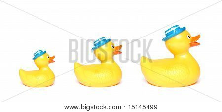 Three Yellow Toy Ducks