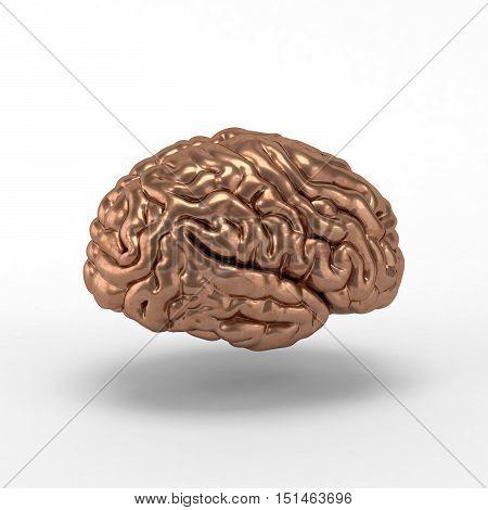 Bronze brain on white background. 3D illustration