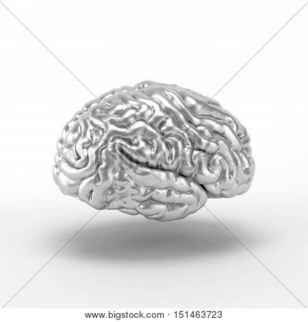 Silver brain on white background. 3D illustration