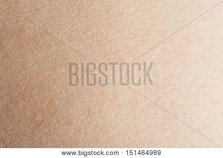 Clean Human Man Skin