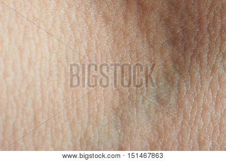 Texture Of Skin With Vein