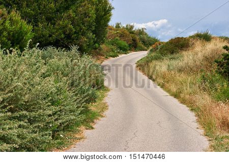 winding road on the hills in summer