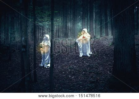 Two Ghost In A Dark Forest.