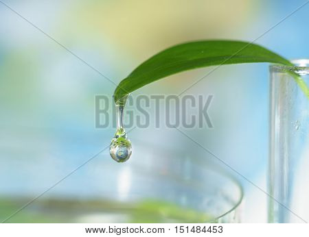 Close up of water drop falling down from the green leaf with earth sphere reflection