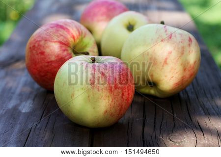 Ripe apples on the bench in the garden closeup