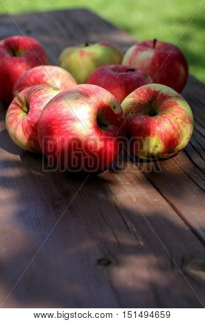 Ripe red apples on the bench in the garden closeup