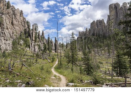 A hiking trail with rock formations in the Black Hills of South Dakota.