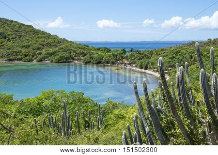 Beautiful calm Melena Bay and Soldier Point on Caribbean island of Isla Culebra in Puerto Rico with dense vegetation under sunny sky