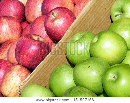 Apples on bazaar in Tel Aviv IsraelJanuary 7 2011