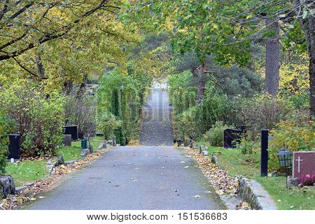 Gravestones on both sides of walkway. Autumn colors trees.