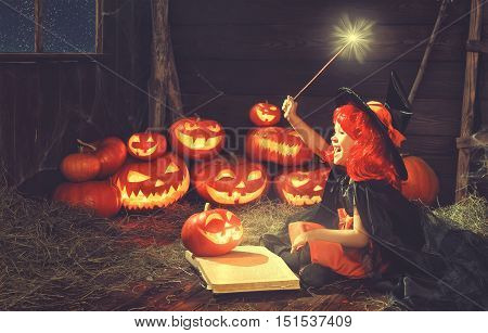Halloween. child little witch with pumpkin Jack and magical book of spells in the old hut