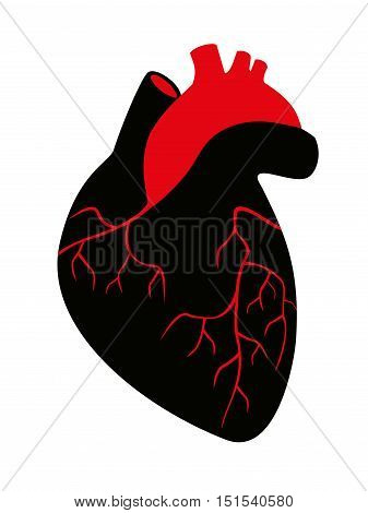 Vector Illustration silhouette of human heart on a white background