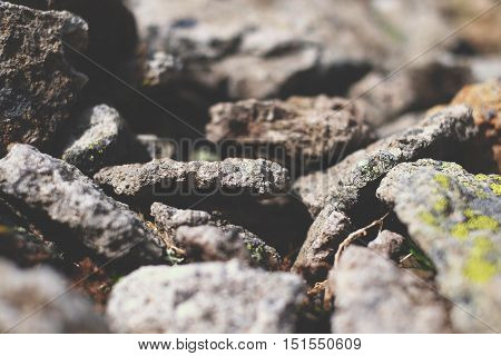 The Texture Of Small Stones