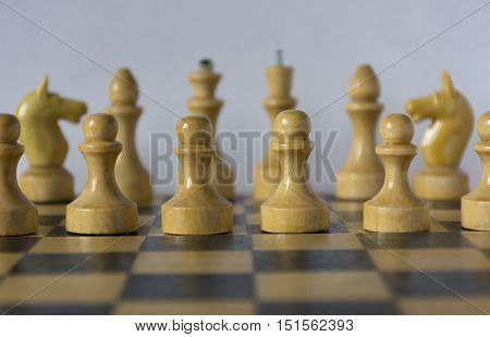 wooden white chess pieces chessman pawn knight castle queen king stand on a chessboard in the initial position in the foreground pawns