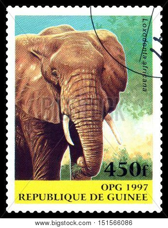STAVROPOL RUSSIA - October 12 2016: a stamp printed in Guinea (Republique de Guinee) shows Elephant Savannah (Loxodonta africana) circa 1997.